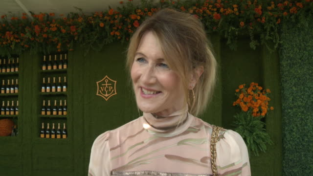 vídeos y material grabado en eventos de stock de interview laura dern at the eighth annual veuve clicquot polo classic los angeles at will rogers state historic park on october 14 2017 in pacific... - laura dern