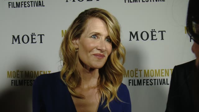interview laura dern on being a juror for the 3rd annual moet moment film festival why its important to support young filmmakers and how it is to be... - juror stock videos & royalty-free footage