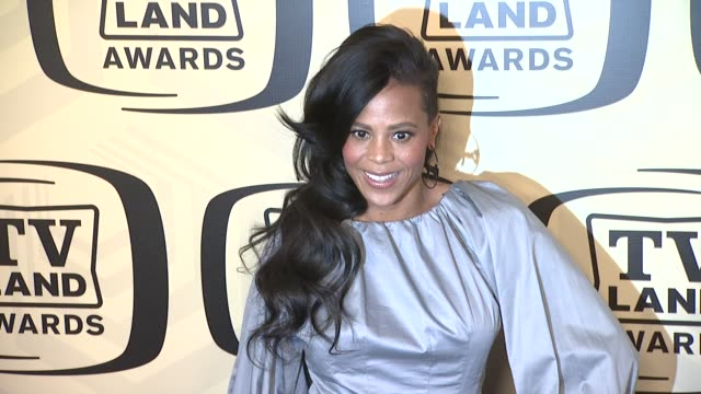 laurieann gibson at tv land awards 10th anniversary arrivals at lexington avenue armory on april 14 2012 in new york ny - tv land awards stock videos and b-roll footage