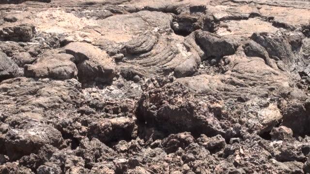 ms zo lava fields and volcanoes at chyulu range near tsavo west national park audio / tsavo west, coast province, kenya - komplett stock-videos und b-roll-filmmaterial