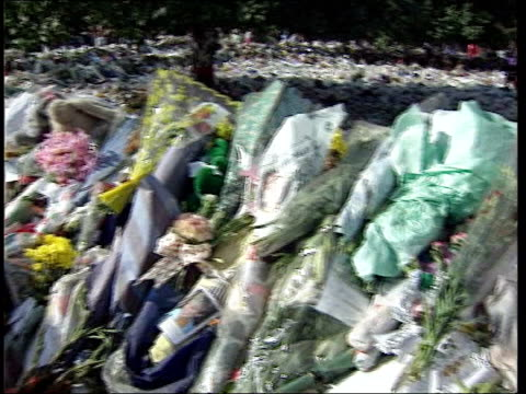 law case freezes diana memorial fund itn lib london kensington mass of flowers laid outside kensington palace following the death of diana princess... - kensington palace video stock e b–roll