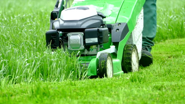 lawn mower mows the grass - lawn stock videos & royalty-free footage