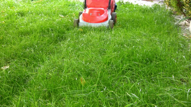 lawn mower (hd) - lawn stock videos & royalty-free footage