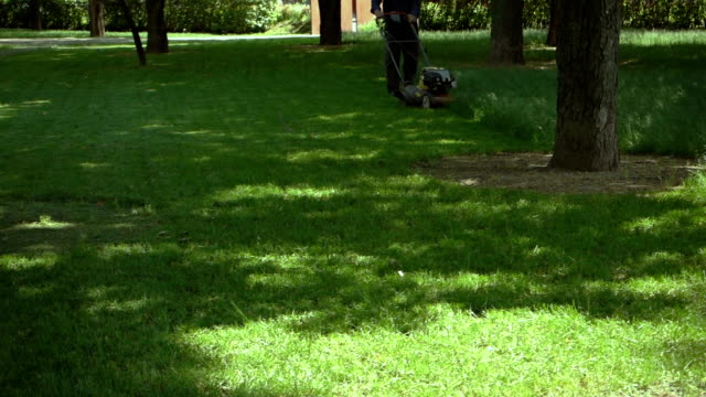 lawn mowing in a park - lawn stock videos & royalty-free footage