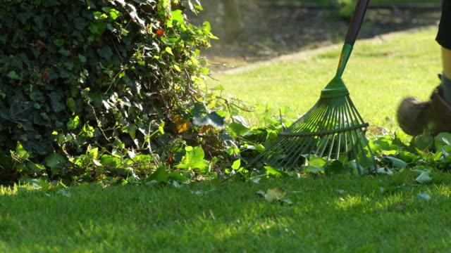 vídeos y material grabado en eventos de stock de lawn rake - formal garden