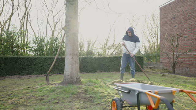 lawn scarifying - moss stock videos & royalty-free footage