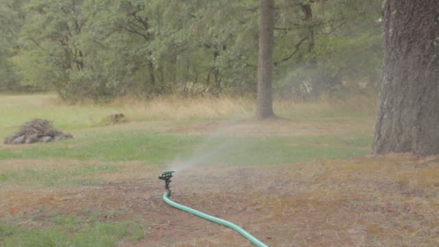 lawn sprinkler splashing water - hose stock videos and b-roll footage