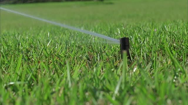 cu lawn sprinkler splashing water - sprinkler stock videos & royalty-free footage