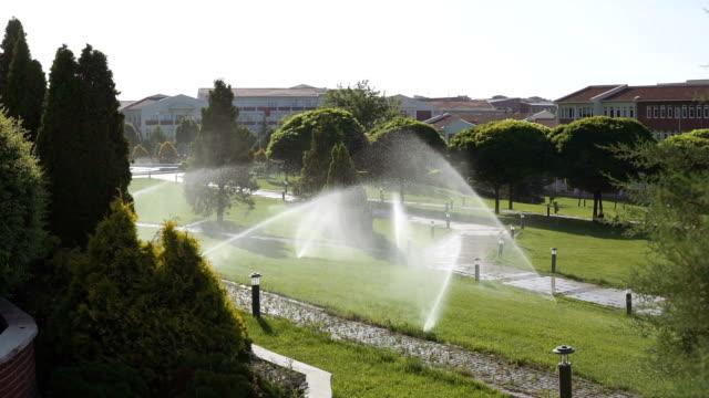vídeos de stock e filmes b-roll de lawn sprinkler spraying water over grass at university campus - pulverizar