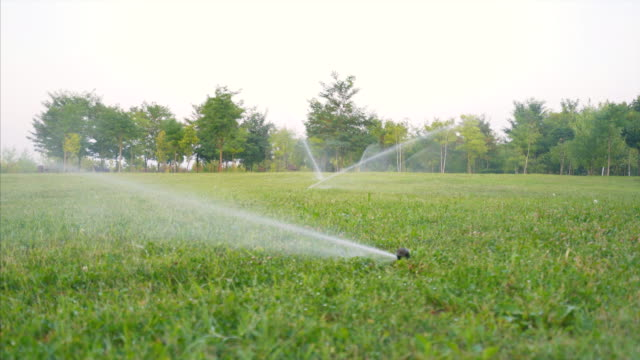 Lawn sprinkler spraying water over grass.