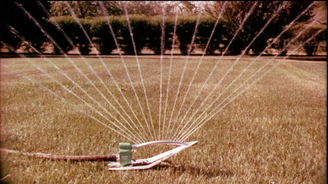 1958 montage cu ms zo lawn sprinkler / usa / audio - sprinkler stock videos and b-roll footage