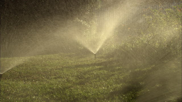ZI, CU, Lawn sprinklers, Los Angeles, California, USA