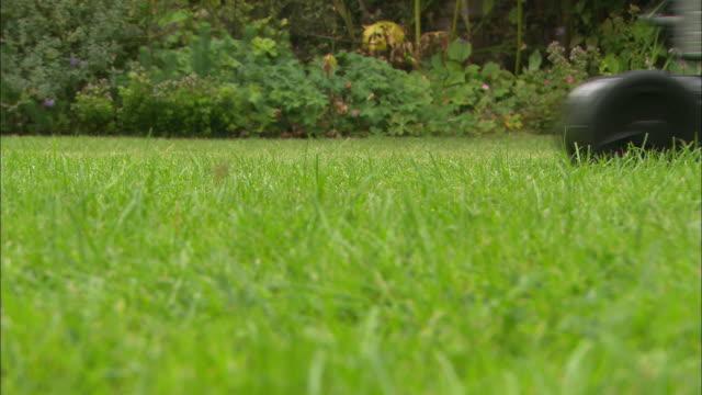 cu la lawnmower passing, grass heavy shot - mowing stock videos & royalty-free footage
