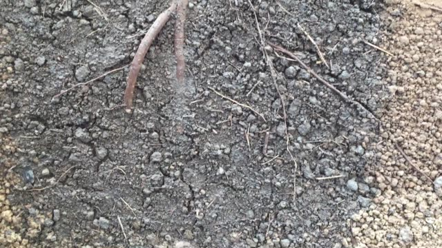 layered of soil background - cross section stock videos & royalty-free footage