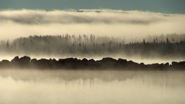 Layers of Fog, Trees Silhouettes and Rocks