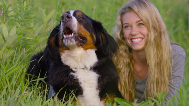 laying in the grass with a pet dog - pet owner stock videos & royalty-free footage