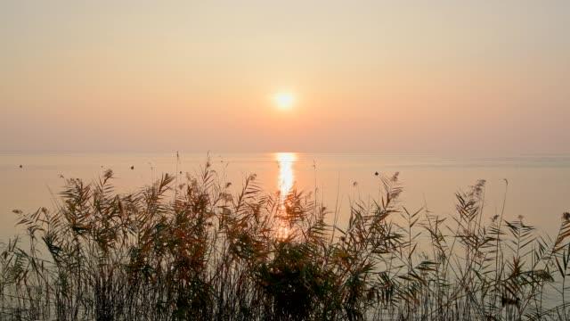 lazise, verona, lake garda, lago di garda, veneto, italy - lago stock videos & royalty-free footage