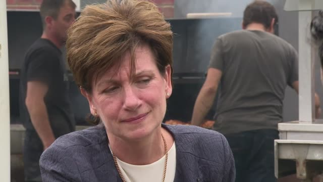 diane james declines to take part in hustings with rivals england gloucestershire gloucester ext meat on wooden board at ukip event server at food... - diane james politik stock-videos und b-roll-filmmaterial