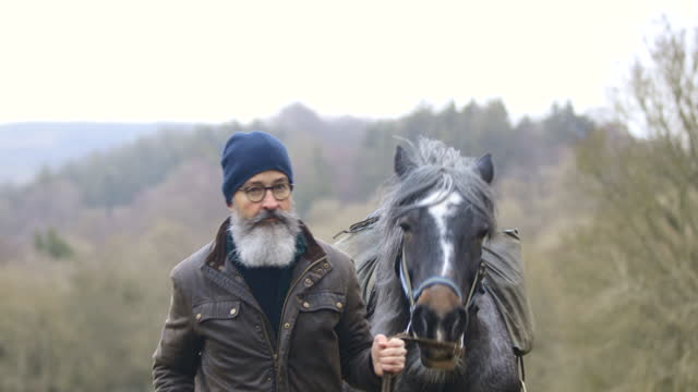 leading his horse - bridle stock videos & royalty-free footage