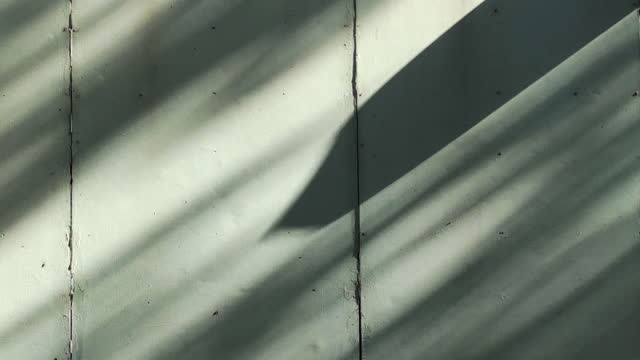 leaf shadow on wall shot on smart phone - wall building feature stock videos & royalty-free footage