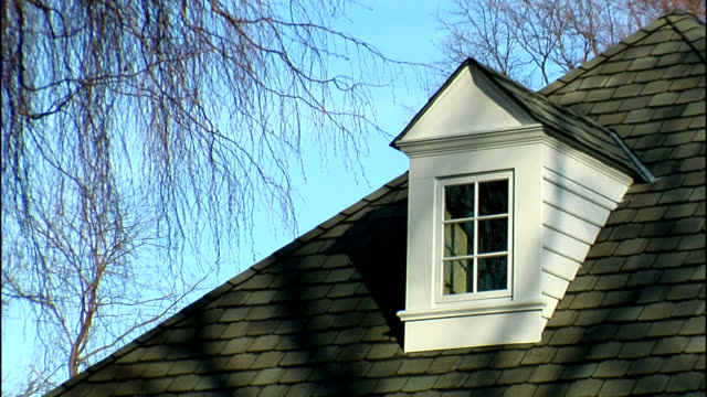 leafless tree branches hang over a dormer on a roof. - dacherker stock-videos und b-roll-filmmaterial