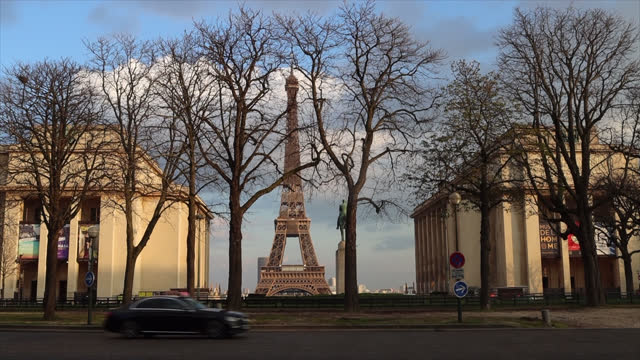 leafless tree in front of the eiffel tower after the curfew, to help stop the spread of the coronavirus , started at 6 p.m. on march 10 in paris,... - bare tree stock videos & royalty-free footage