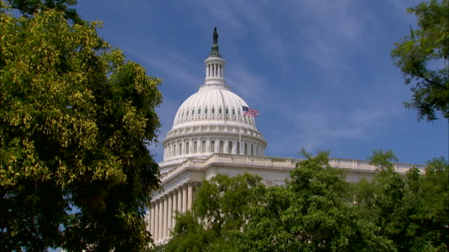 Leafy branches frame the dome of the U.S. Capitol Building.