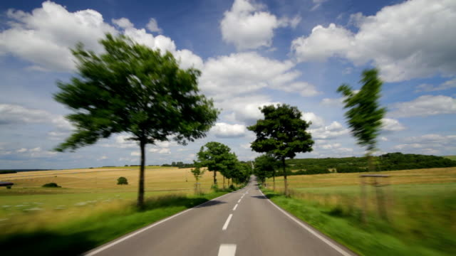 Leafy trees line a highway in Saarland, Germany.