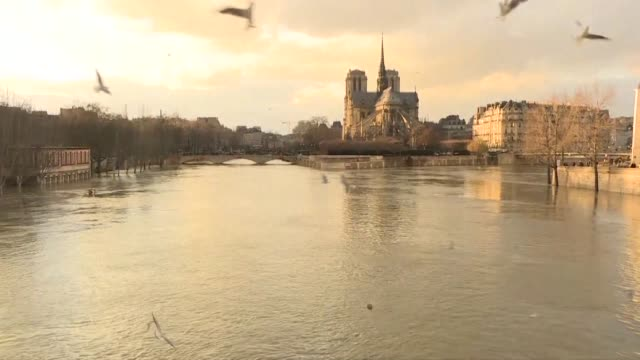 Leaks were starting to appear Friday in the basements of Paris buildings as the Seine inched higher with forecasters warning that the river could...