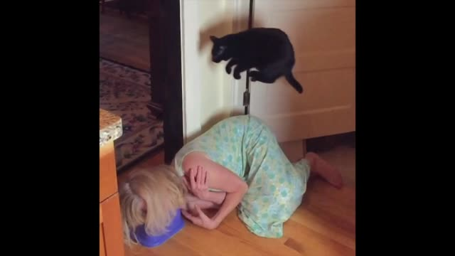 leapfrog the cat just loves to jump over anyone and anything! check it out! - leapfrog stock videos & royalty-free footage