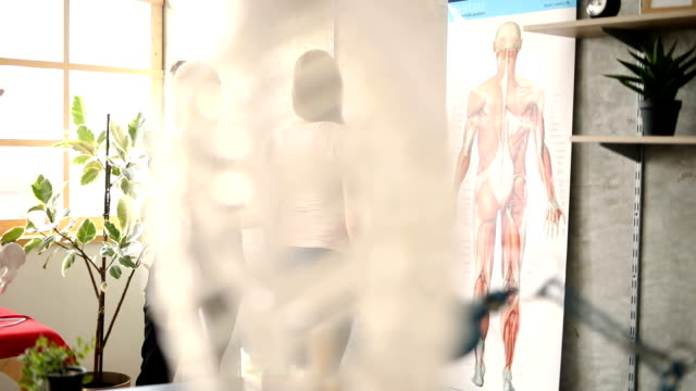 learning about human anatomy - alternative therapy stock videos & royalty-free footage
