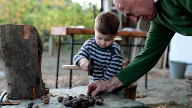 Lära sig att knäcka nötter