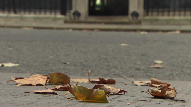 leaves being cleared from downing street - leaf stock videos & royalty-free footage