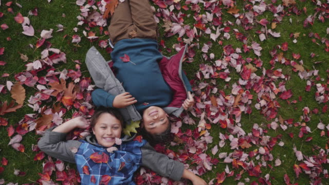 Leaves falling on brothers in the park