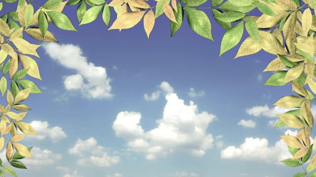 Folhas no Céu