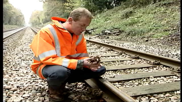 New solution ENGLAND Surrey Train along tracks with leaves blowing up around wheels Train away CMS Train wheels along on tracks surrounded by fallen...
