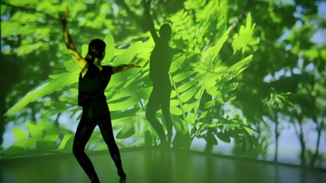 leaves projection upon a female dancer - projection stock videos & royalty-free footage