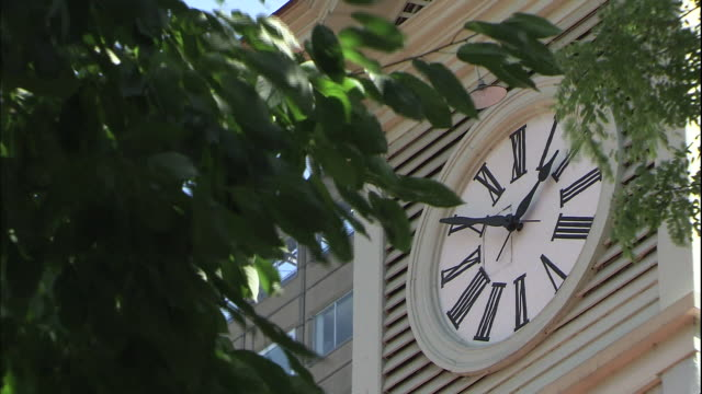 leaves that surround a large clock face wave in the breeze. - turmuhr stock-videos und b-roll-filmmaterial