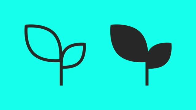 Leaves - Vector Animate