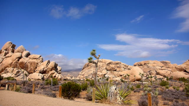 leaving hall of horrors in joshua tree national park - national landmark stock videos & royalty-free footage