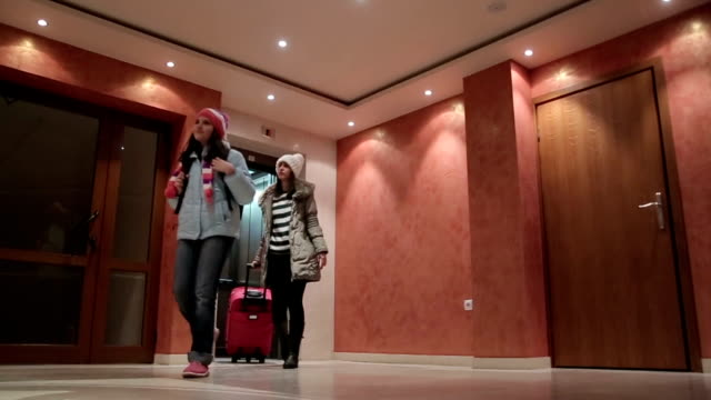 leaving the hotel at the end of the winter vacation - receptionist stock videos and b-roll footage