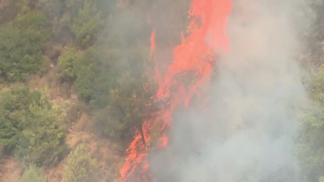 lebanese civil defence members spray water on the burning trees of the chouf district as lebanon turns to its neighbours for help with battling the... - lebanon country stock videos & royalty-free footage