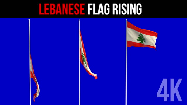 lebanese flag  flag - election stock videos and b-roll footage