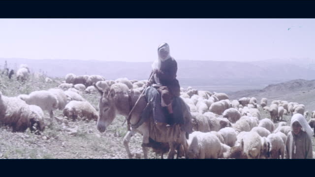 1968 lebanon - rural life - lebanon country stock videos & royalty-free footage