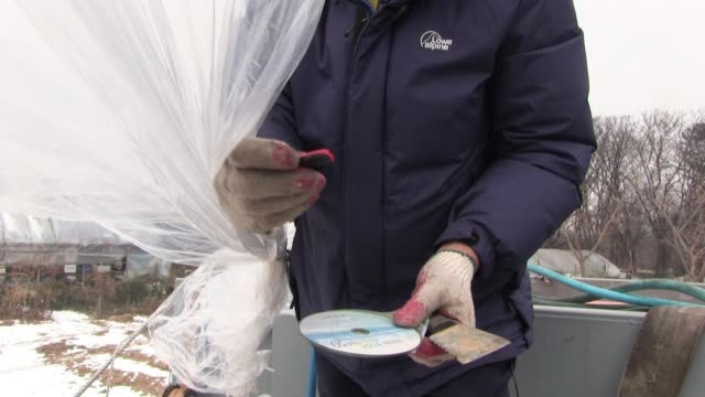 lee min-bok, a north korean defector shows the cd disk and memory stick which he puts in a large hydrogen balloon filled with with leaflets and sends... - eddie large stock videos & royalty-free footage