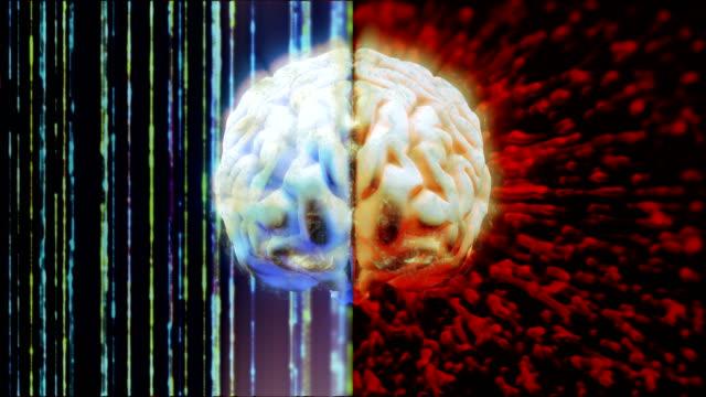 left and right brain functions - emisfero cerebrale video stock e b–roll