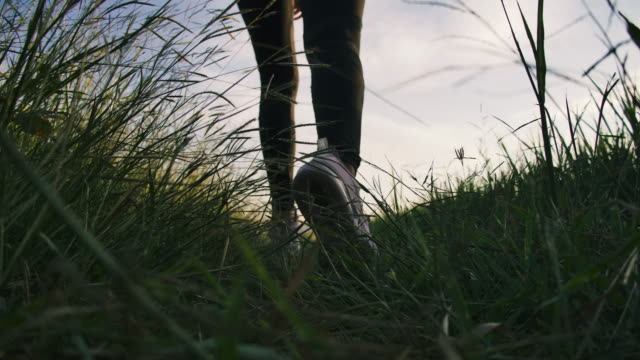 leg shot of a woman runner running in the field at sunset enjoy his time in nature - gravel stock videos & royalty-free footage