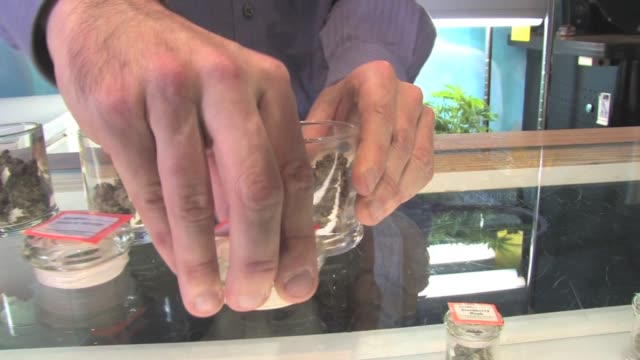 vidéos et rushes de legal medical cannabis dispensary in west hollywood, california displays products for sale including plants, plant product and edibiles - hollywood californie