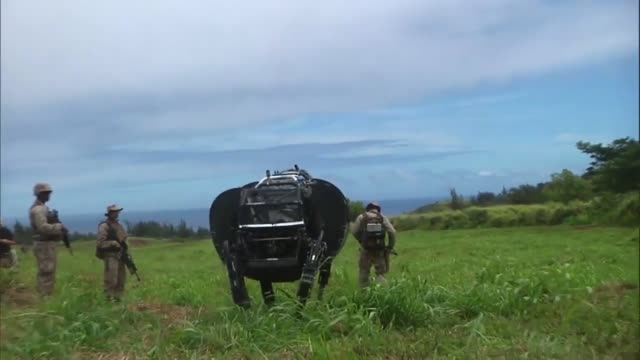 legged squad support system through an open field at kahuku training area july 10 2014 the ls3 is experimental technology being tested by the marine... - mule stock videos & royalty-free footage