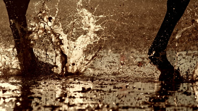 SLO MO TS Legs of a horse running on wet ground